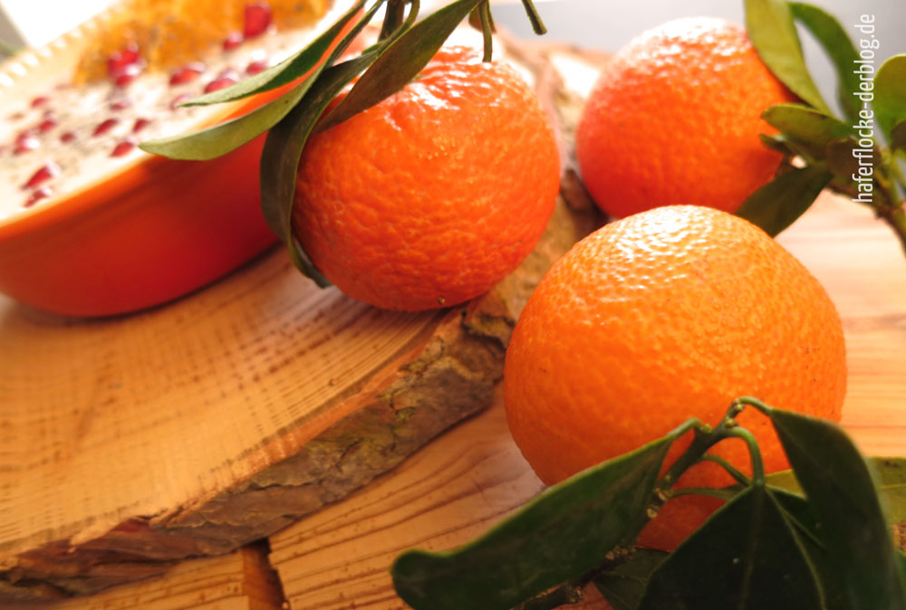 Mandarine_Mohn_Porridge1_web