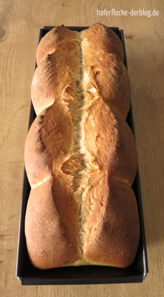 Berliner_Toast_nach_Ploetzblog_web